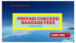 Cebu Pacific Prepaid Baggage Fees 2018: Domestic and International Flights