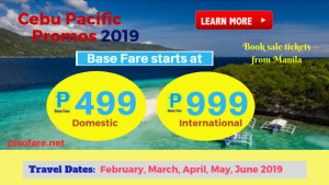 cebu-pacific-2019-promo-ticket-sale