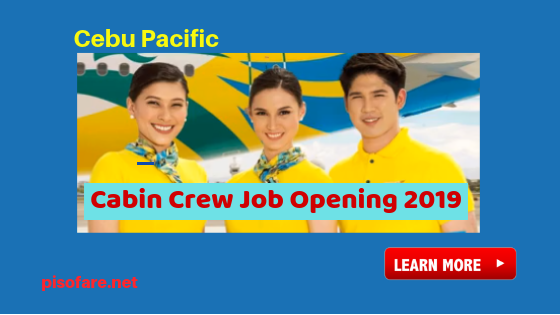 cebu-pacific-male-and-female-cabin-crew-job-vacancies