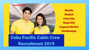 cebu-pacific-cabin-crew-job-opening-2019